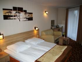 Pokój Hotel Activia